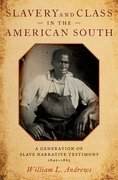 Cover for Slavery and Class in the American South - 9780190908386