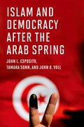 Cover for Islam and Democracy after the Arab Spring