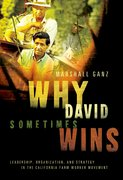 Cover for Why David Sometimes Wins