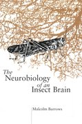 Cover for The Neurobiology of an Insect Brain