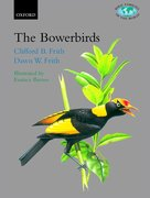 Cover for The Bowerbirds