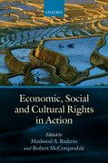 Cover for Economic, Social, and Cultural Rights in Action