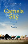 Cover for Camels in the Sky