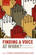 Cover for Finding a Voice at Work?